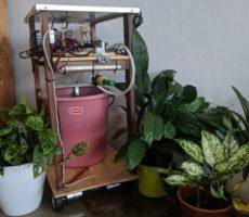 plant-irrigation.jpg